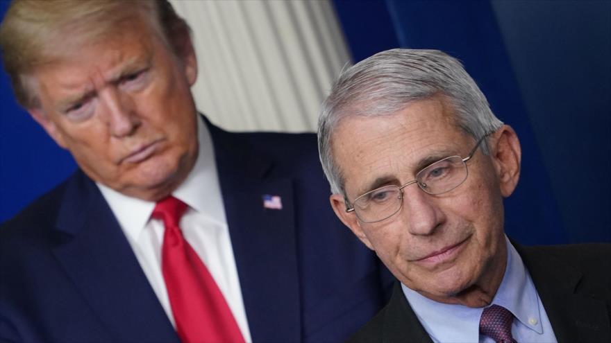 El principal epidemiólogo del Gobierno de EE.UU., Anthony Fauci, y el presidente Donald Trump en la Casa Blanca, 22 de abril de 2020. (Foto: AFP)