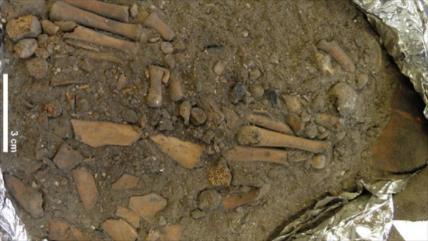 Entierro de un niño de 8000 años revela raros secretos funerarios