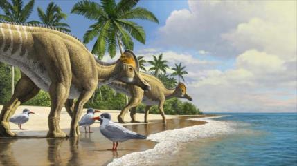 Estudio revela: Dinosaurios cruzaron el océano para llegar a África
