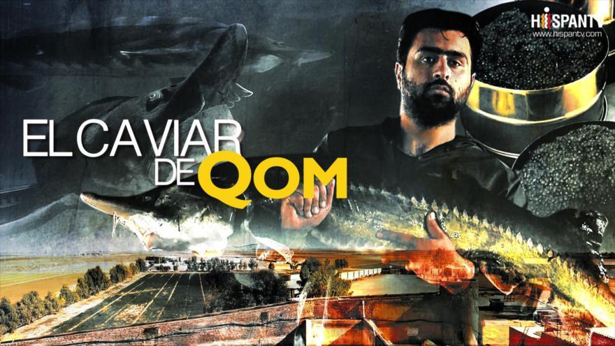 El caviar de Qom