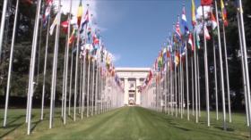 ONU rechaza sanciones. Caos electoral en EEUU. Protesta en Honduras - Boletín: 12:30 - 26/11/2020