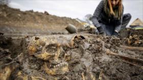 Hallan extraña fosa común de la edad medieval en Países Bajos