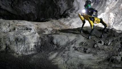 NASA planea enviar perros robot a Marte para explorar terrenos