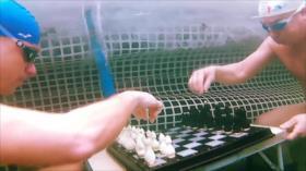 Vídeo: Juegan en Rusia una partida de ajedrez en agua helada