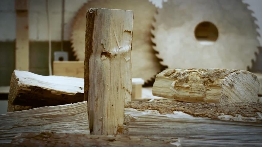 Bazaar: Industria maderera