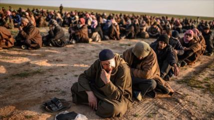Siria y Rusia acusan a EEUU a excarcelar a miembros de Daesh