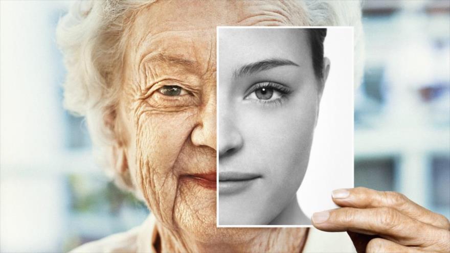 Científicos desarrollan una terapia genética capaz de retrasar el envejecimiento.
