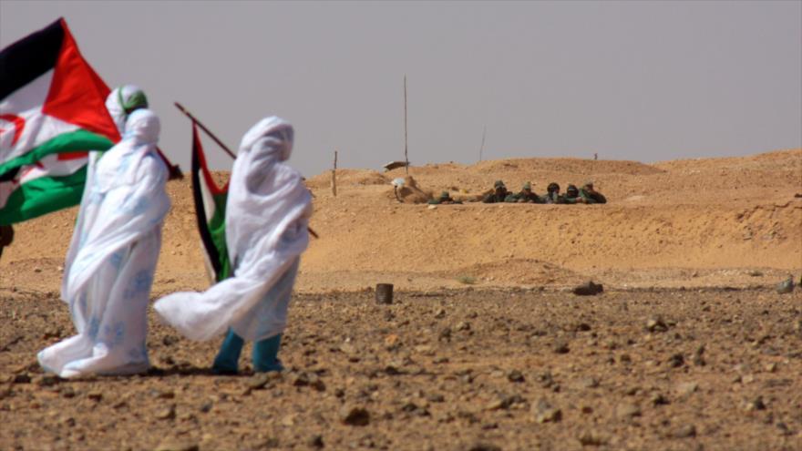 Miembros del Frente Polisario en Sahara Occidental.