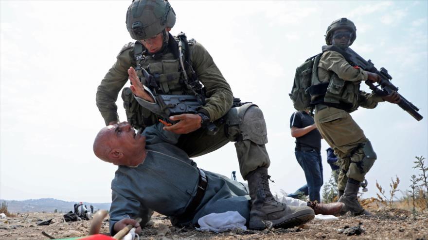 Israelíes atacan con perros a activistas y periodistas palestinos