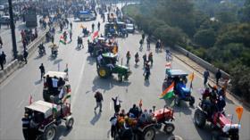 Agricultores indios protestan contra la reforma agraria