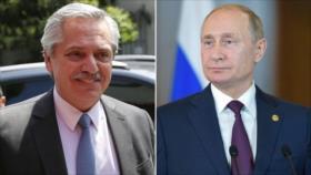 """""""Muy buen diálogo"""": Putin y Fernández afianzan los lazos de amistad"""