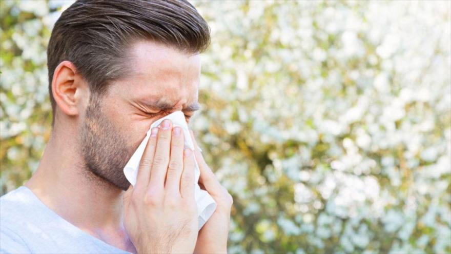 Un inmunólogo descubre que la reacción de la alergia puede depender del alimento consumido.