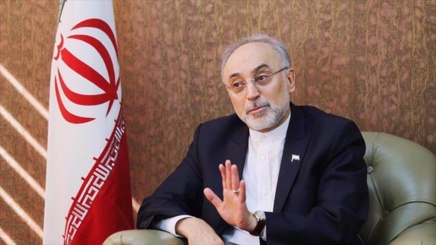 El jefe de la Organización de Energía Atómica de Irán (OEAI), Ali Akbar Salehi. (Foto: Mehrnews)