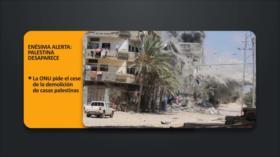 PoliMedios; Enésima alerta: Palestina desaparece