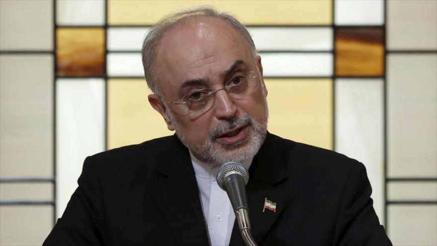 El jefe de la Organización de la Energía Atómica de Irán (OEAI), Ali Akbar Salehi.