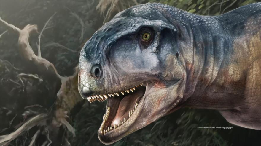 Impresión artística del dinosaurio carívoro llamado Llukalkan, hecha por Jorge Blanco.