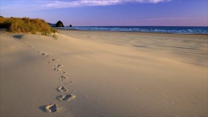 España: Hallan pistas de niños jugando en playa hace 100 000 años