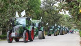 Agricultores españoles rechazan cambios a subsidios agrícolas