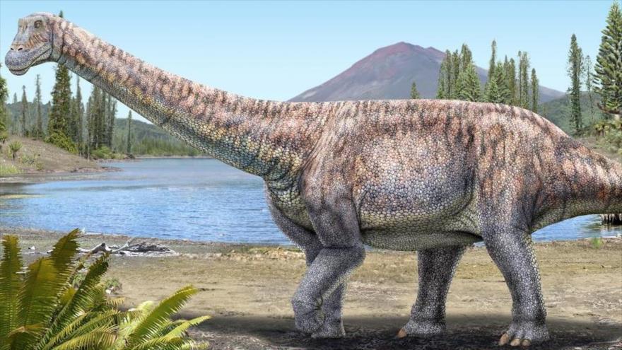 Modelo del Arackar Licanantay, el dinosaurio presentado el 19 de abril de 2021 en Chile.