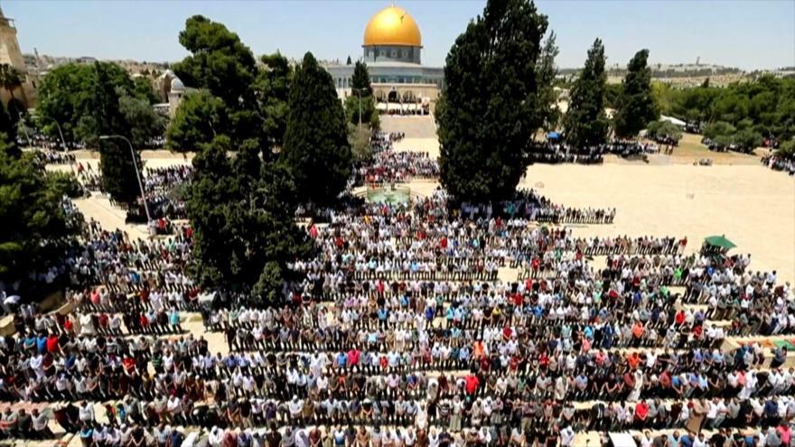 Países islámicos expresan su apoyo a la causa palestina   HISPANTV