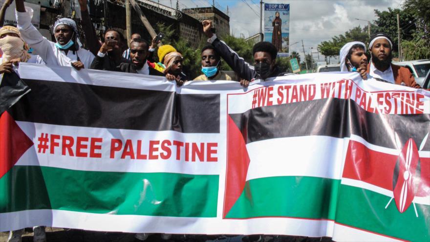 El mundo se solidariza con Palestina ante los crímenes de Israel   HISPANTV