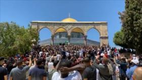 Agresión israelí. Solidaridad con Palestina. Elecciones en Irán - Noticias Exprés: 19:30- 14/05/2021