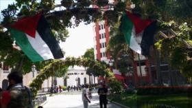 Agresión israelí. Solidaridad con Palestina. Negociaciones Argentina-FMI - Boletín: 01:30 - 15/05/2021