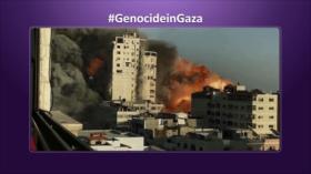 Etiquetaje: Genocidio de Israel en Palestina