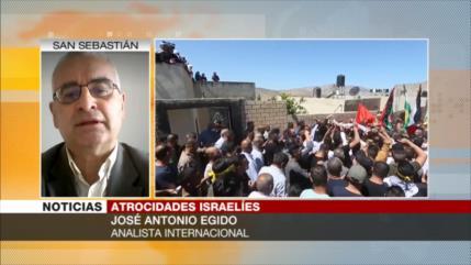 Egido: Resistencia palestina hace fallar previsiones del conflicto