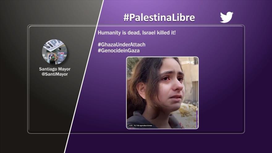 Etiquetaje: Palestina Libre