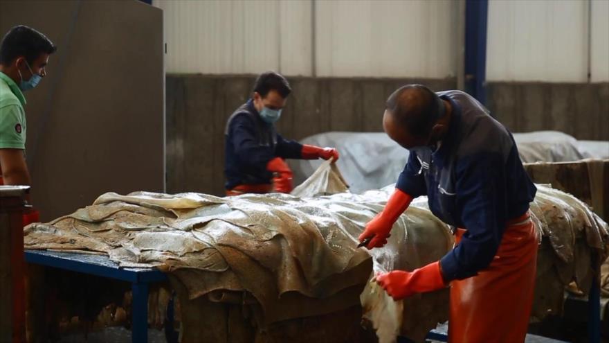 Bazaar: Industria del cuero
