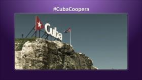 Etiquetaje: Cooperación médica de Cuba