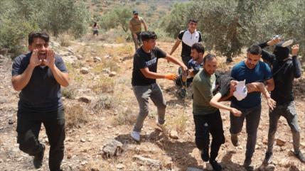 Vídeo: Fuerzas israelíes matan a un manifestante palestino