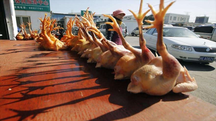 Un hombre en China es el primer humano contagiado con la cepa H10N3 de gripe aviar.