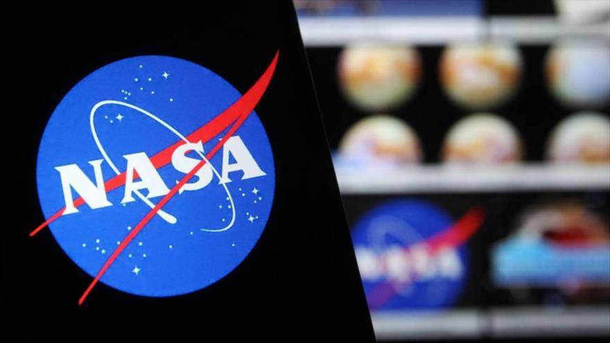 NASA envía animales microscópicos y calamares bebé al espacio.