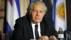 México censura políticas injerencistas de OEA y pide su disolución