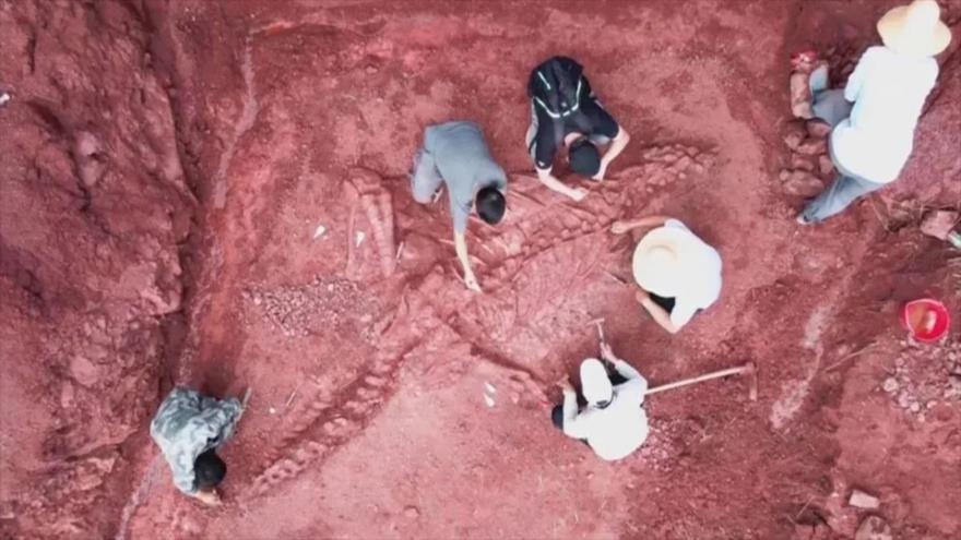 Captura de un vídeo en que se ve a paleontólogos chinos en la zona que descubrieron fósil casi completo de un dinosaurio. (Foto: China News)