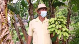 Campesinos de Panamá alertan sobre el impacto de la minería