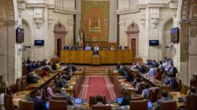 Vídeo: Una rata enorme interrumpe el parlamento andaluz