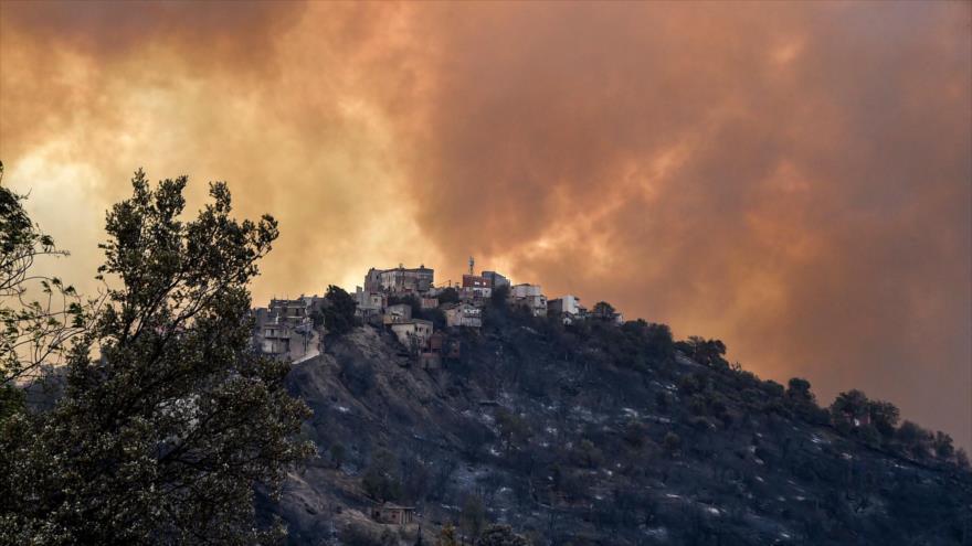 Incendios forestales en Argelia dejan al menos 69 fallecidos | HISPANTV