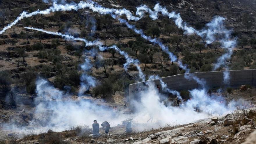 Represión israelí deja 117 heridos y 7 detenidos en Cisjordania   HISPANTV