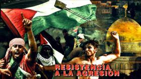 Detrás de la Razón : Palestina combate la judaización de Al-Aqsa