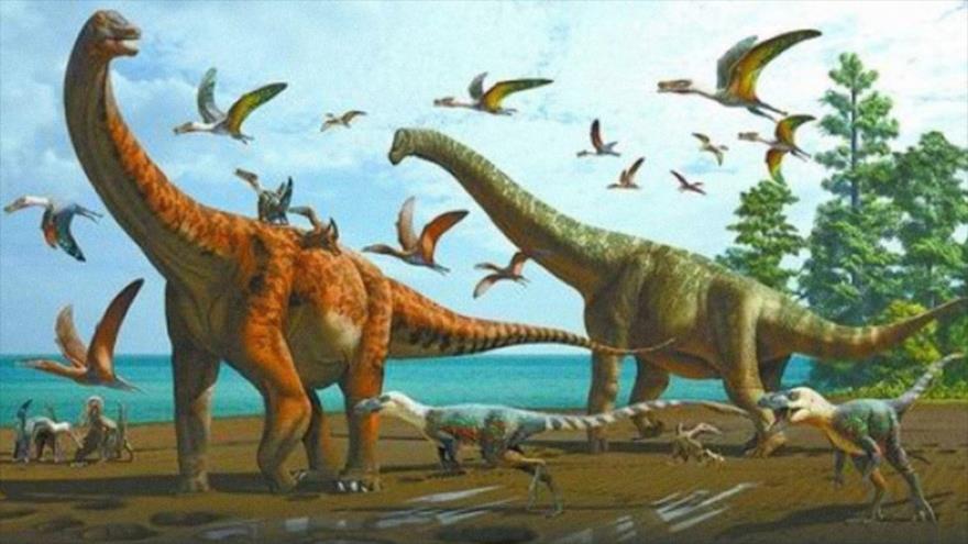Hallan dos nuevas especies de dinosaurios gigantescos en China | HISPANTV