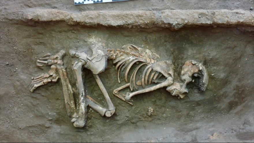 Vídeo: Hallan esqueletos de niños en tumba de 5000 años en Turquía