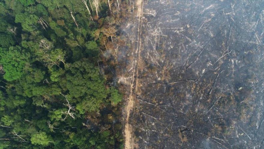 Vista general de Amazonía en el estado de Amazonas, Brasil, 11 de agosto de 2020. (Foto: Reuters)