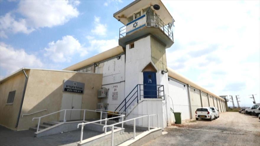 Capturan a 4 de los 6 palestinos fugados de cárcel israelí | HISPANTV