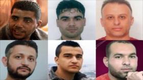 200 organizaciones de DDHH piden protección para presos palestinos