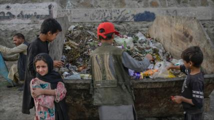 PMA: Solo el 5 % de los hogares afganos tiene suficiente para comer