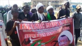 Nigerianos participan en marcha simbólica de Arbaín