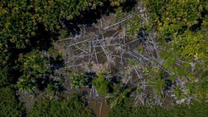 La Amazonía pierde en 36 años una superficie similar a la de Chile